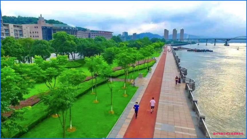 温州市鹿城区57千米省级绿道即将彩色栽植